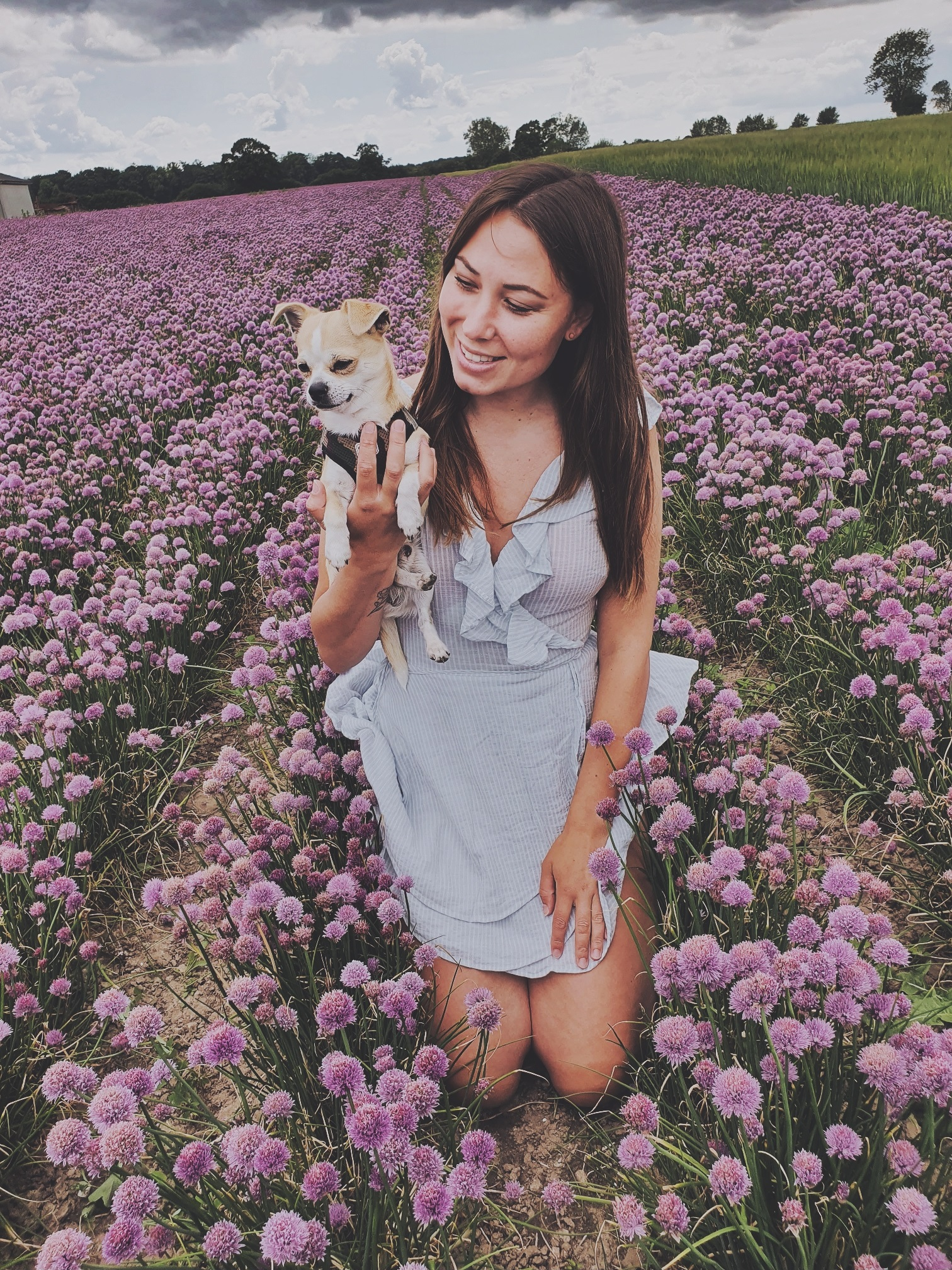 sitting with my dog in a flower field